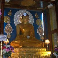 La statua raffigurante il buddha