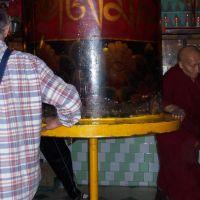 Giriamo la ruota del samsara il ciclo di  vita :